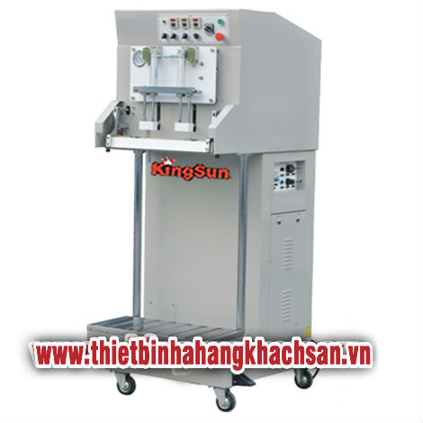 Vacuum Gas-filling Packaging Machine