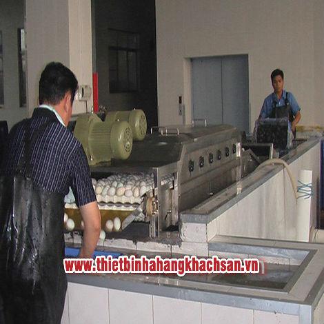 Máy rửa và phân loại trứng